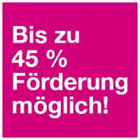 45-Prozent-Foerderung